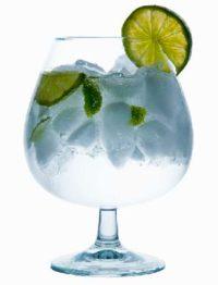 Gin & Tonic til fest og events i Danmark